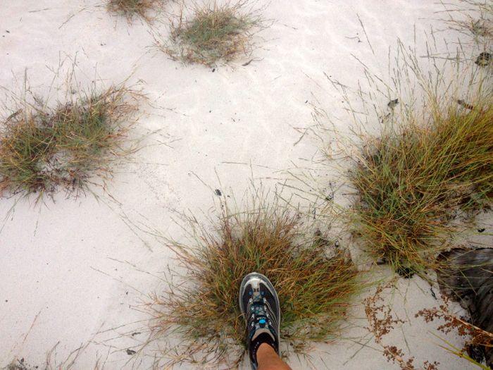 Conrad Stoltz Caveman Hoka One One Mafate 3 Xterra Grabouw run course grass footing
