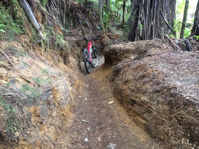 Conrad Stoltz XTERRA New Zealand Rotorua Billy T single track groove