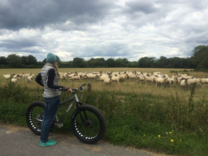 Conrad Stoltz Caveman XTERRA UK 2014 Liezel Stoltz PrincessHotstuuf sheep
