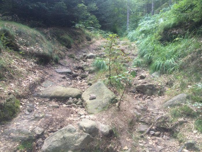 Conrad Stoltz, caveman , Cross Triathlon Worlds 2014 O see high speed  boulders of death