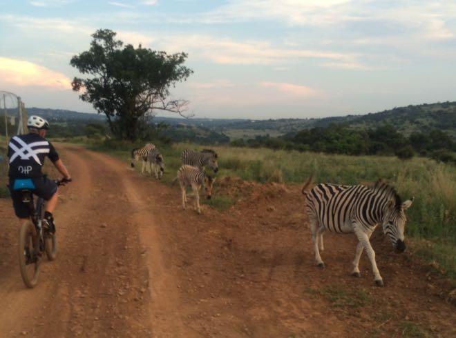 Conrad Stoltz Caveman Skills Clinic Groenkloof Zebras Frans