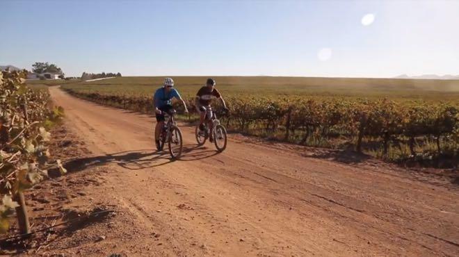 Conrad Stoltz Caveman Meurant Botha Perdeberg Winery MTB vineyards